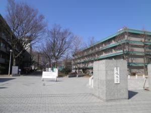 愛媛大学 英語