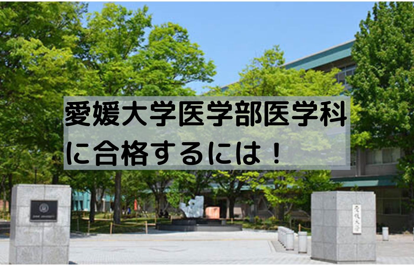 愛媛大学医学部医学科に合格するための戦略や計画を紹介!