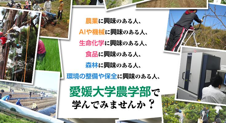 愛媛大学 農学部 AO入試
