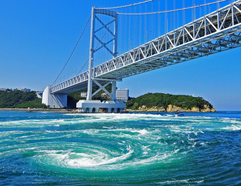 徳島大学 愛媛大学 比較
