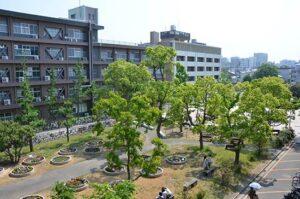 香川大学 入試 合格